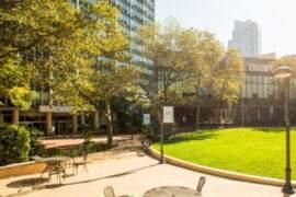 Immersion linguistique jeune New York