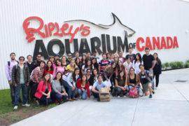 Gap Year Toronto Activités Ripley's aquarium