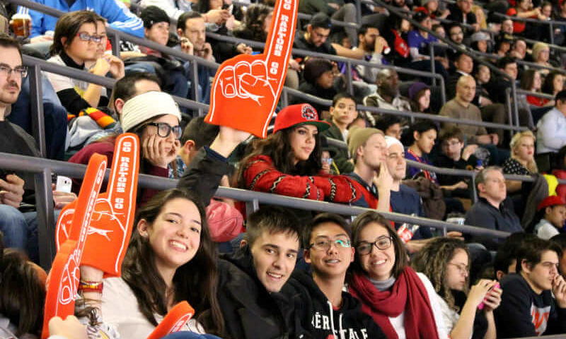 Gap Year Toronto activité basket ball Raptors Game