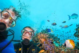 Séjour linguistique Anglais et plongée à St Julian's Malte